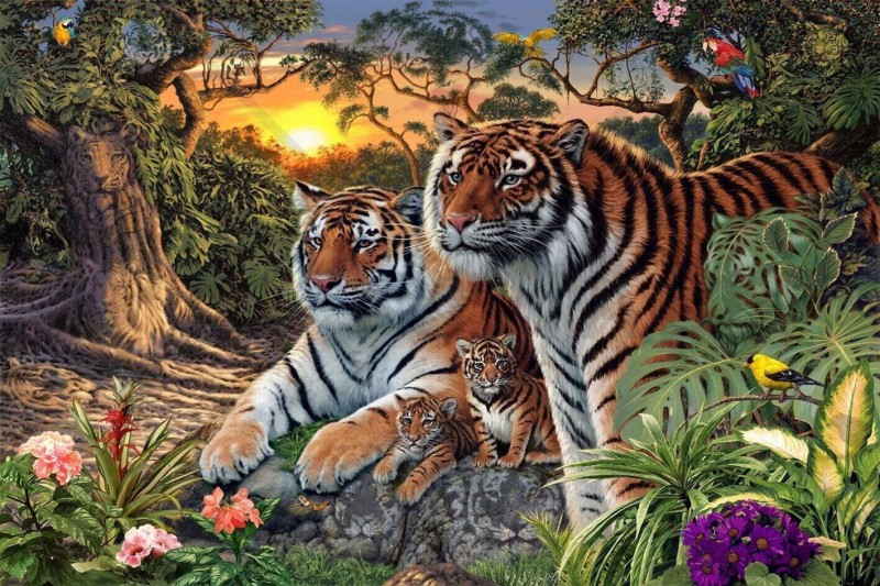 Сколько тигров на картинке ?